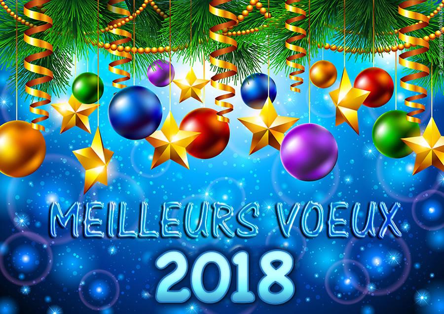 2018_Meilleurs Voeux_bonne-annee_018b